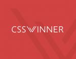 css-winner